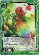 【ホログラム】虹色椿ブラウンシケーダ
