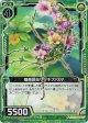 【ホログラム】擬態昆虫サツキファスマ