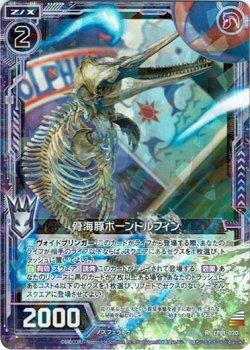 画像1: 骨海豚ボーンドルフィン
